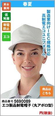 エコ高制電帽子